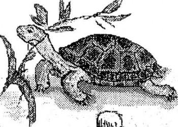 Гепатит у черепах