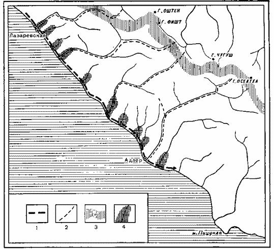 Схема направлений пролета птиц