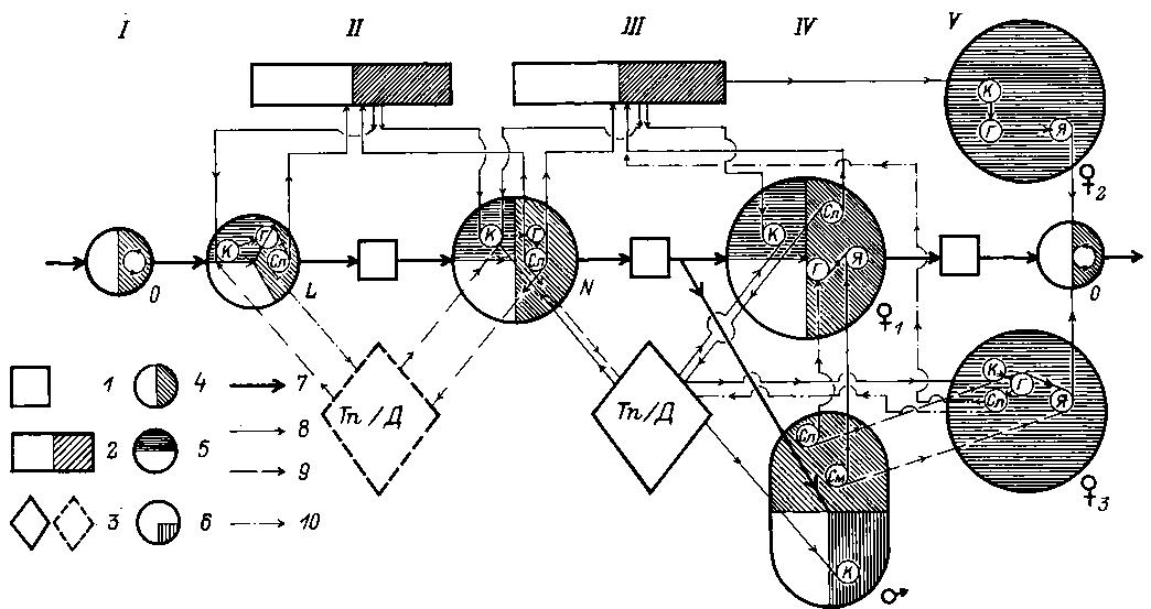 Схема функционирования системы
